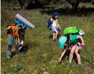 Campamento de verano decathlon