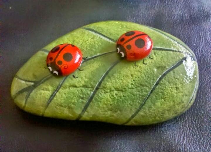 hojas piedras