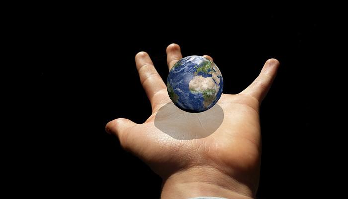 12 causas medioambiente