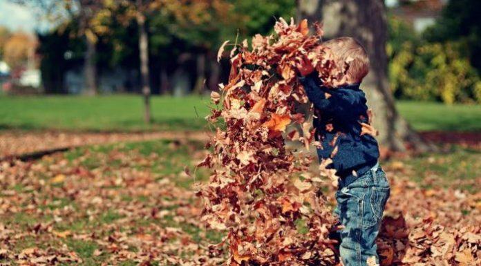 niños felices jugar